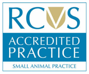 RCVS Accredited