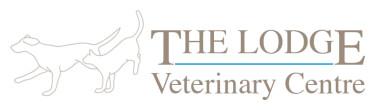 The Lodge Veterinary Centre Birmingham